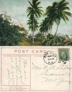 SAN JUAN PUERTO RICO CASA BLANCA PALMS ANTIQUE 1909 POSTCARD w/ CORK CANCEL