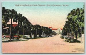 Seabreeze Florida~Seabreeze Boulevard Homes~Dead Ends at Clarendon Hotel~c1910