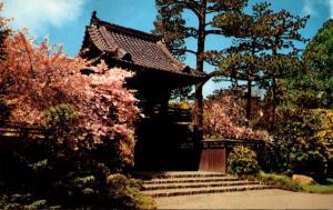 California San Francisco Golden Gate Park Oriental Tea Garden
