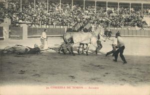 Spain Bullfighting Corrida de toros Arrastre 01.79