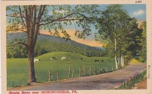 Pennsylvania Greetings From Monongahela Curteich