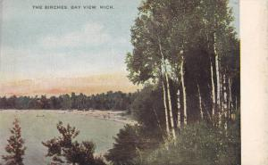 The Birches, Bay View,  Michigan,  00-10s