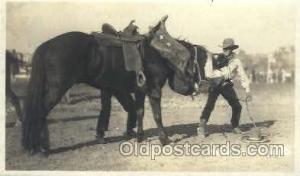 Calgary Stampede Western Cowboy, Cowgirl Postcard Postcards  Calgary Stampede
