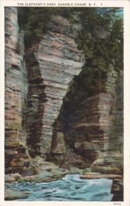 The Elephant's Head Ausable Chasm New York Curteich
