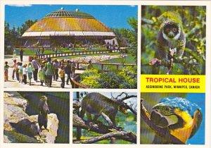 Canada Tropical House Assiniboine Park Winnipeg Manitoba