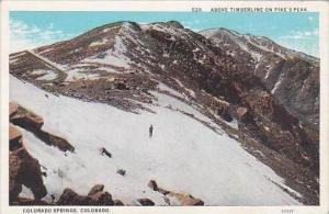 Colorado Colorado Springs Above Timberline On Pikes Peak