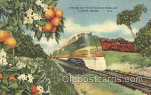 The Orange Groves, Florida, USA,  Seaboard Air Line, Train Trains Locomotive,...