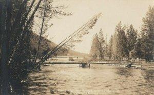 RP: GRAND LAKE , Colorado , 1910s ; Foot Bridge , North Inlet