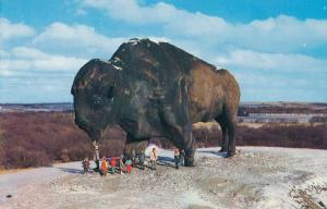 Jamestown ND, North Dakota - World's Largest Buffalo - Roadside