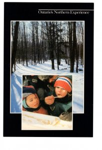 Ontario`s Northern Experience Maple Sugar, Oversize, 6 X 9 inch Vintage Postcard