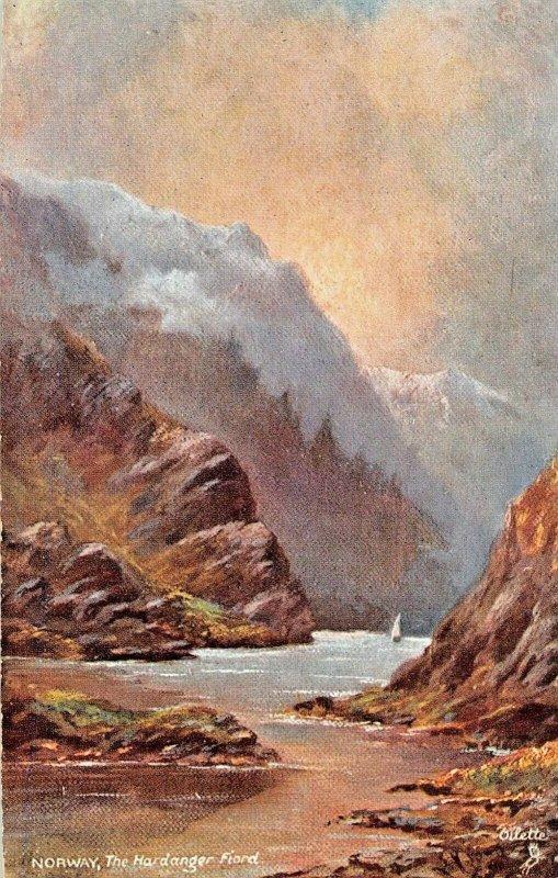 THE HARDANGER FJORD NORWAY~TUCK WORLD WIDE VIEW-NORWAY SERIES I POSTCARD