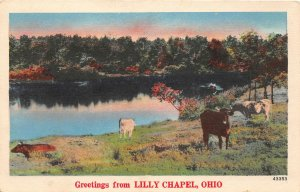 G46/ Lilly Chapel Ohio Postcard Linen Greetings from Lilly Chapel Madison Co