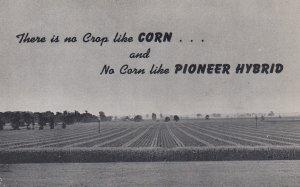 Pioneer Hybrid CORN , 50-60s