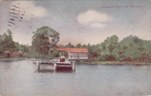 Michigan Paw Paw Lake Douglas View 1910