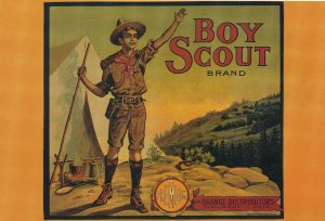 Orange Boy Scout Brand Ohio American Advertising Postcard