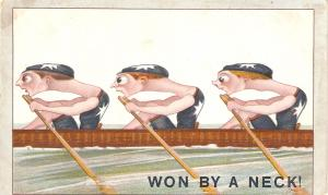 Won by a neck Humorous antique  English postcard