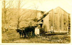 VT - Milton. Making Maple Sugar, 1907.   *RPPC