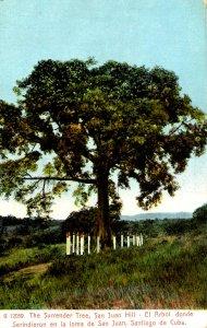 Cuba - Santiago de Cuba. San Juan Hill, Surrender Tree