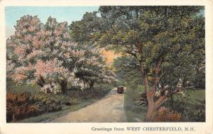 West Chesterfield New Hampshire Scenic Roadway Greeting Antique Postcard K93067