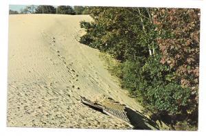 3 Desert of Maine Postcards Freeport ME Chromes