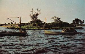 Waldorf Maryland St Clements Island Waterfront Vintage Postcard K81249