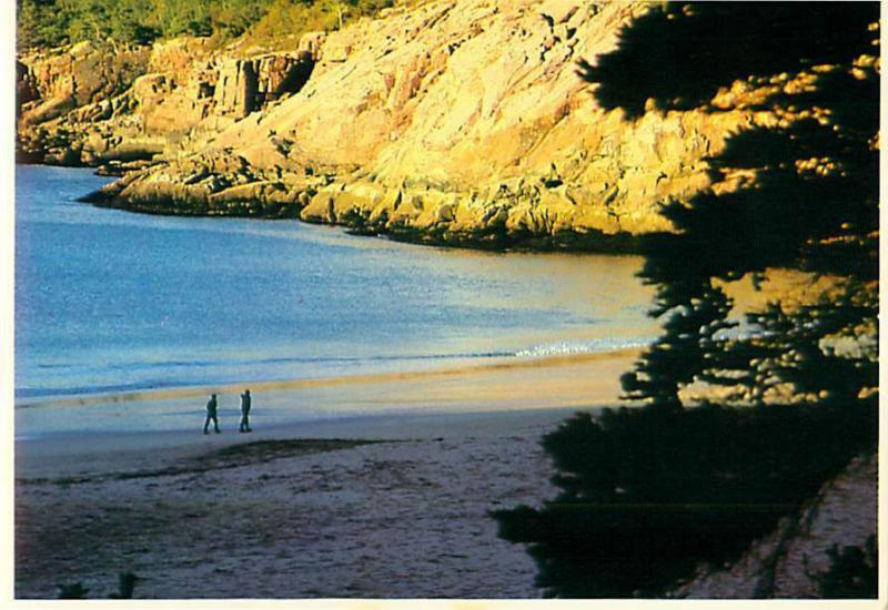 Sand Beach Acadia National Park Bar Harbor Maine Shores Cliffs  Postcard  # 8745