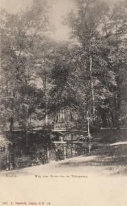 BERLIN, Germany, 1900-10s; Weg zum Neuen See im Thiergarten