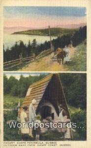 Quebec Canada, du Canada Oxcart, Gaspe Peninsula  Oxcart, Gaspe Peninsula