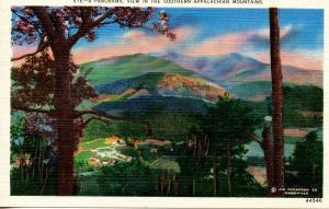 US    PC801  VIEW IN THE SOUTHERN APPALACHIAN MOUNTAINS
