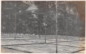 Portugal Lisboa Lisbon King Edward VII Garden, Park