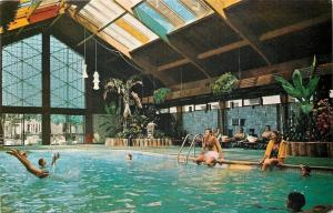 Minneapolis Minnesota~The Curtis Motor Lodge~Guests Dive into Indoor Pool~1978