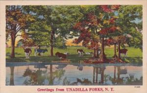 New York Unadilla Forks Greetings From Unadilloa Forks
