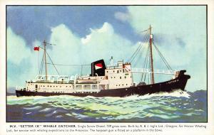 MV Setter IX whale catcher ship Postcard