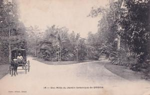 Saigon Jardin Indonesia Old Postcard