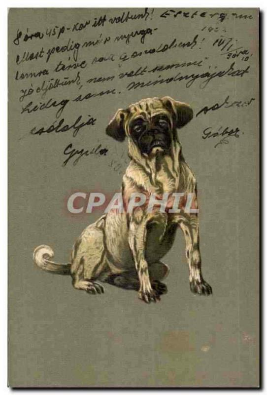 Animaux - Chien - Sleepy hunting dog (carte hongroise Hungary Hongrie) - CPA