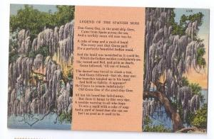 Legend of Spanish Moss Vintage Tichnor Linen Postcard
