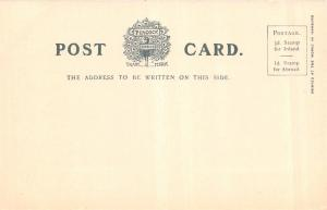 BIRMINGHAM WEST MIDLANDS UK~GENERAL HOSPITAL PEACOCK PLATINO-PHOTO POSTCARD