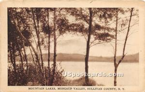 Mountain Lakes Mongaup Valley NY Unused