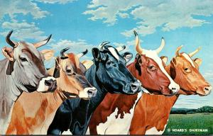 Wisconsin Fort Atkinson Hoard's Dairyman Five Cows Brown Swiss Jersey Ho...