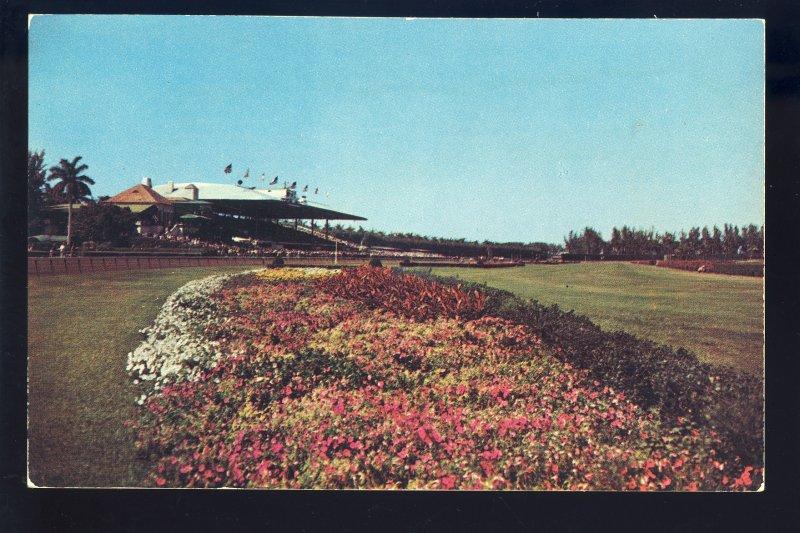 Hialeah, Florida/FL Postcard, Hialeah Race Track
