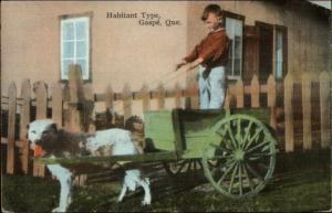 Gaspe Quebec Boy in Dog Drawn Wagon Old Postcard