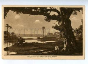 192049 INDIA MADRAS Banyan Tree Old ADVERTISING air mail RPPC