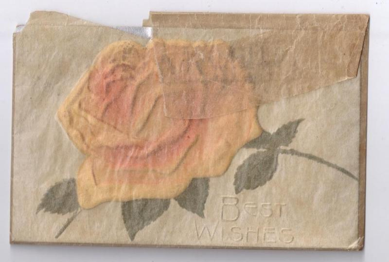 1909 Best Wishes Padded Silk Rose Postcard Silver