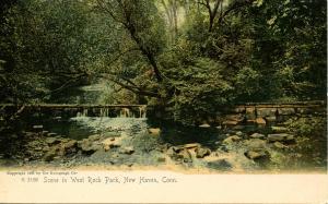 CT - New Haven - West Rock Park, Pastoral Scene