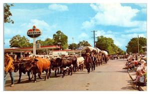 1950s/60s Westward Ho! Parade, Pendleton, OR Postcard