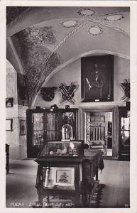 RP, Interior, Zamek (Kunstatsky Sal), Polná, Vysočina Region, Czech Republi...