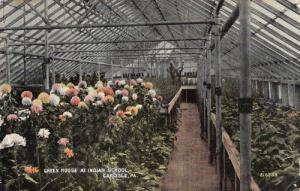 Indian India Green House Carlisle USA School Plants Botany Rare Antique Postcard