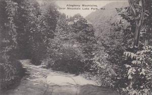 Maryland Mountain Lake Park Allegheny Mountains Albertype