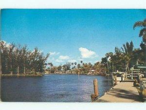 Pre-1980 RIVER SCENE Everglades National Park - Near Miami Florida FL AE6009