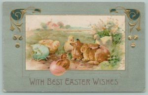 Easter~Chicks Hatch From Colored Eggs~Surround Brown Bunnies~Embossed~1908
